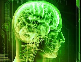 brain-green-tea.jpg.webp