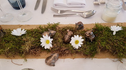woodland table scape