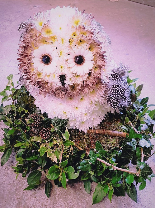 Owl Tribute