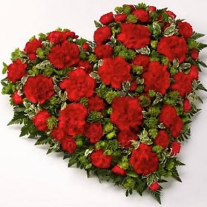 Loose red carnation heart