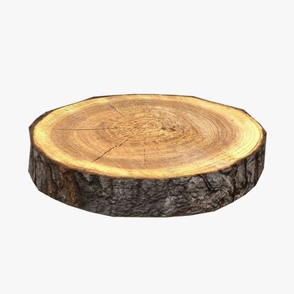 Wooden Log Slice