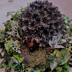 hedgehog funeral tribute