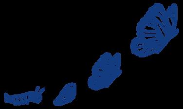 elemento_13_azul.png