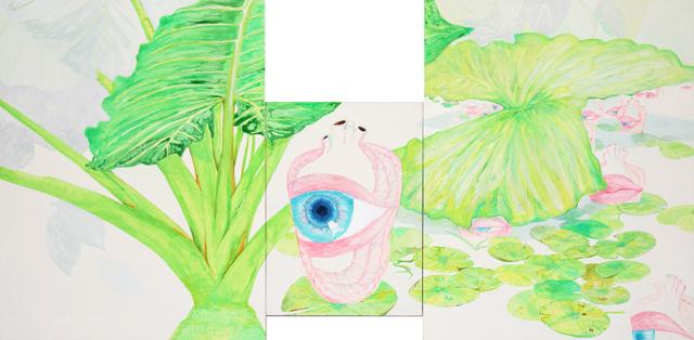 심상의 연못 Lotus pond of a mental image