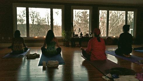 Yoga%20of%20Trees%2005_edited.jpg