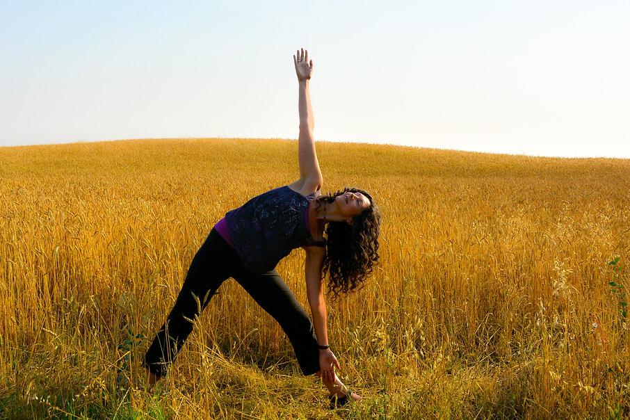 Prairie Wheat Michelle Triangle 01.jpg