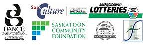 DSI Logo Group w. funders.jpg