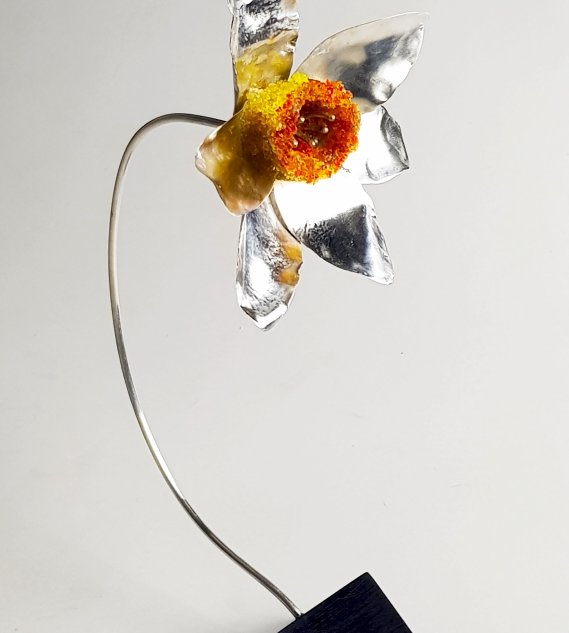 RebeccaOldfield - 4D Daffodil