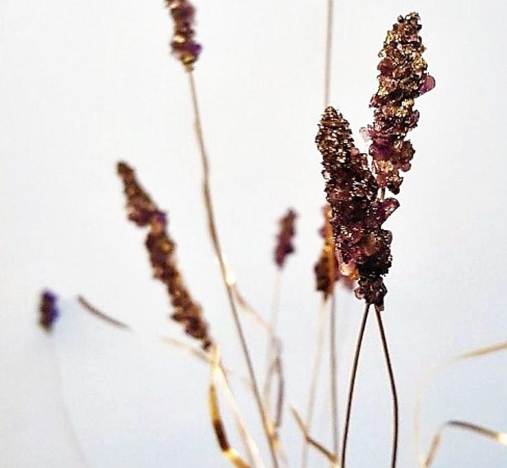 Rebecca Oldfield 4D Lavender Plant