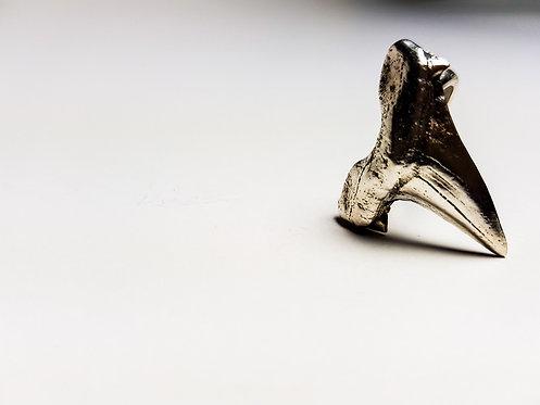 shark tooth, casting, cast jewellery, ring, oxidised, silver, cardiff, silversmith, cardiff jeweller, silversmiths cardiff