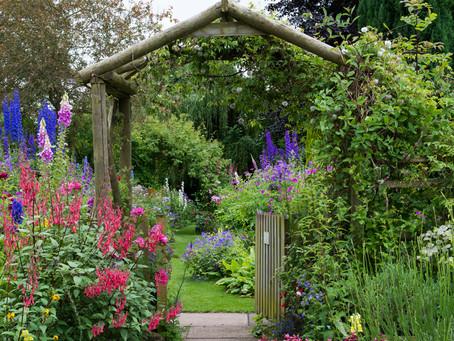 Fall Planting for Beginner Gardeners