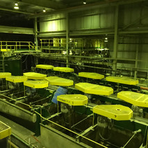 Existing Flotation Cells