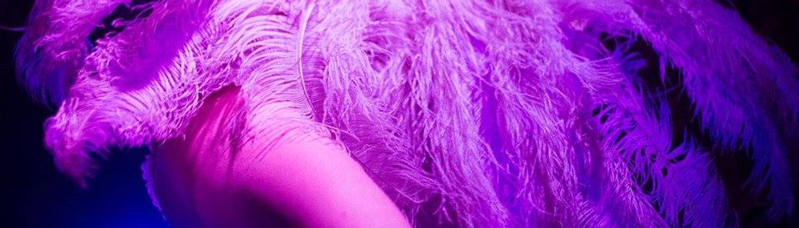 Burlesque, burleska, umělecký stip, burleskní show