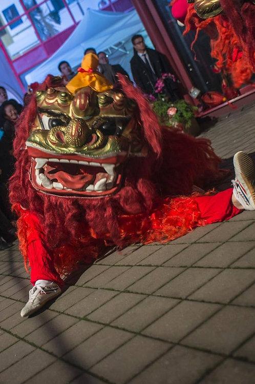Hlava čínského lva