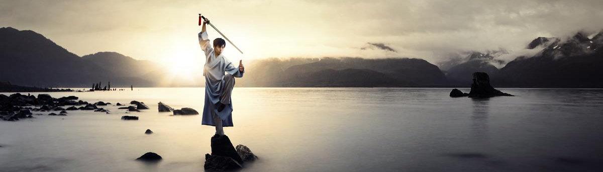 Bojové exhibice, šerm, čínské a japonské sportovní ukázky