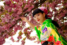 Japanese dancer, kimono girl, geiha