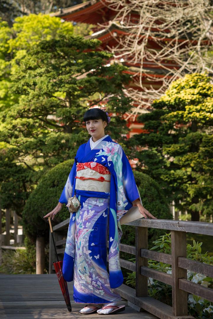 Spring in Japanese gardens