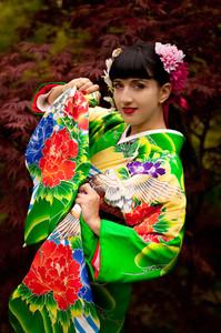 Kimono girl / Geisha