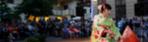 Festivaly, pořádání festivalů a kulturních akcí pro veřejnost