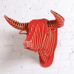 trophee-taureau-bois-rouge-descriptif-3-1100x1100