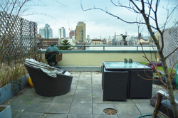 Roof Terrace with Skyline View
