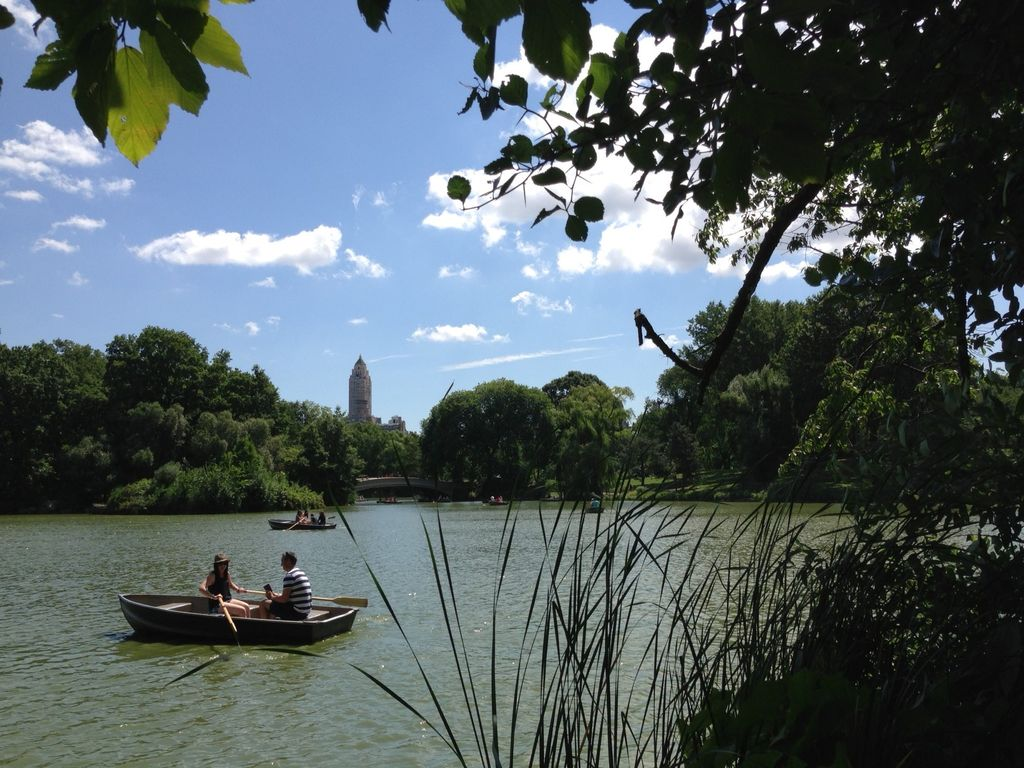 Rowing in Central Park.jpg