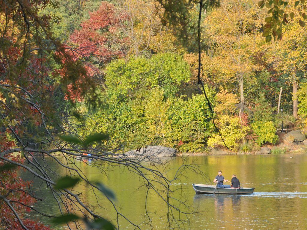 Central Park Boatride in autumn.jpg