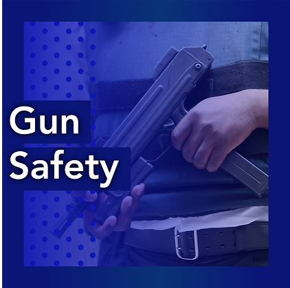 Tabitha Johnson-Green - Gun Safety
