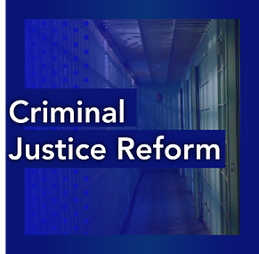 Tabitha Johnson-Green - Criminal Justice Reform