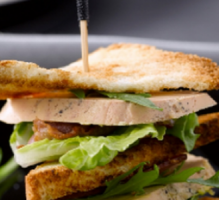 Sandwich canard