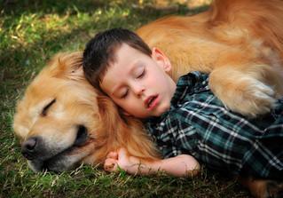 descansando_juntos.jpg