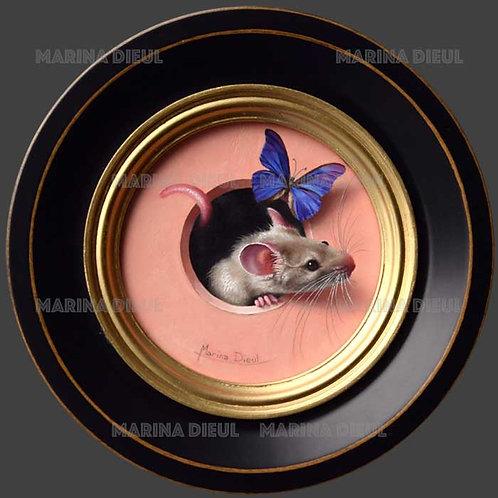 Petite souris 436