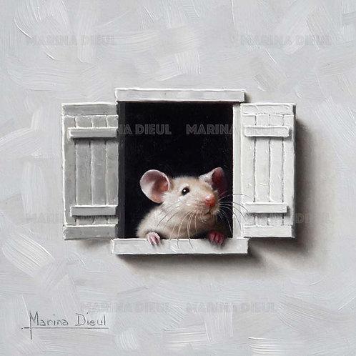 Souris à la fenêtre 7 ( Art Print )