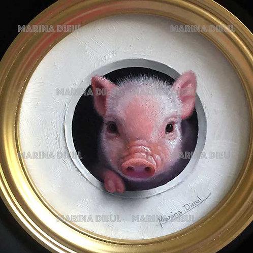 Mini cochon 2
