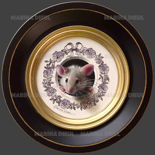 Petite souris 506