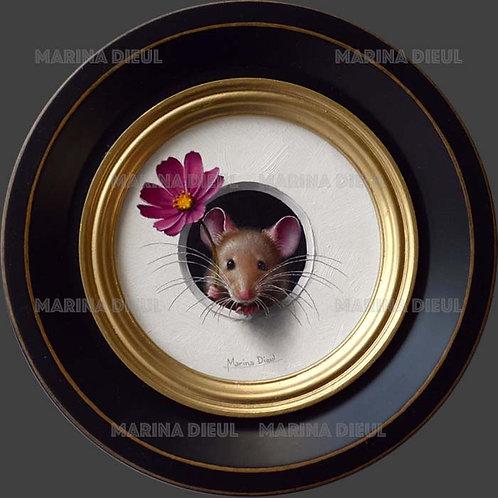 Petite souris 470