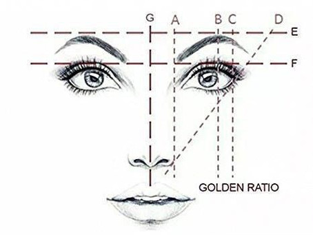 The Golden Ratio Principle In Eyebrow Microblading