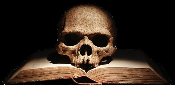 Squelette .png