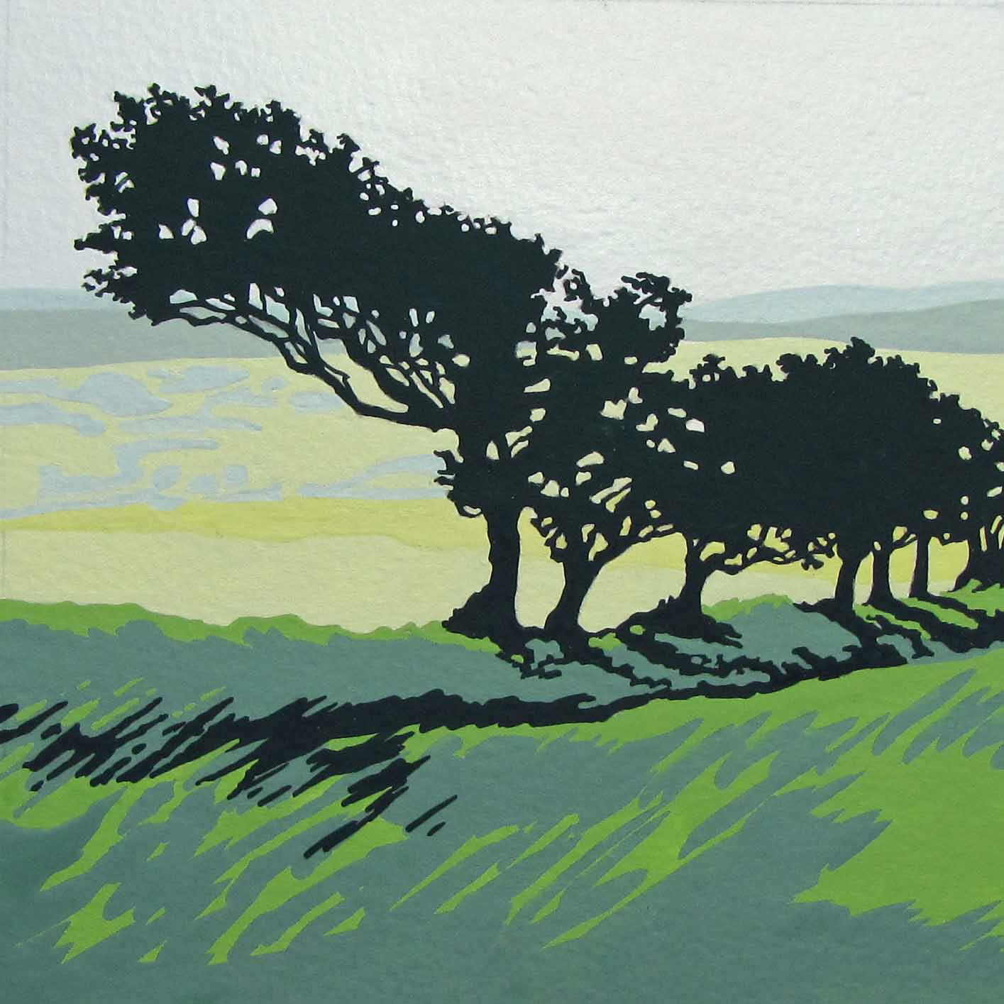 Windswept, Dartmoor