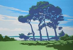 Isle of Wight from Lepe II