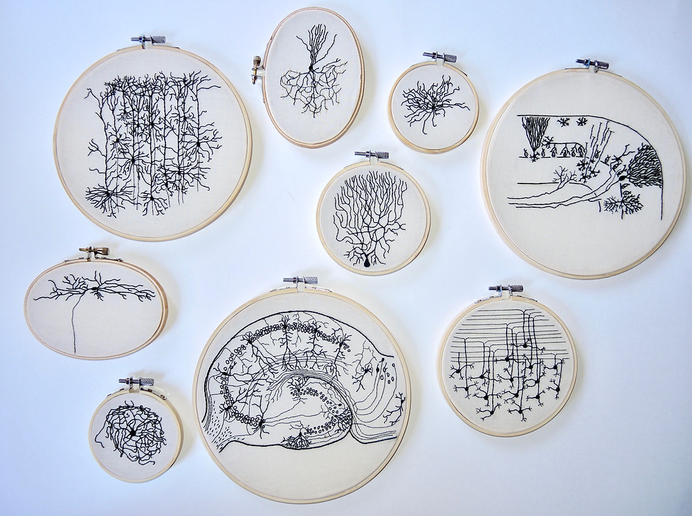 Photo of some of the '100 Neuron project' embroidery hoops stitched by Lauren.