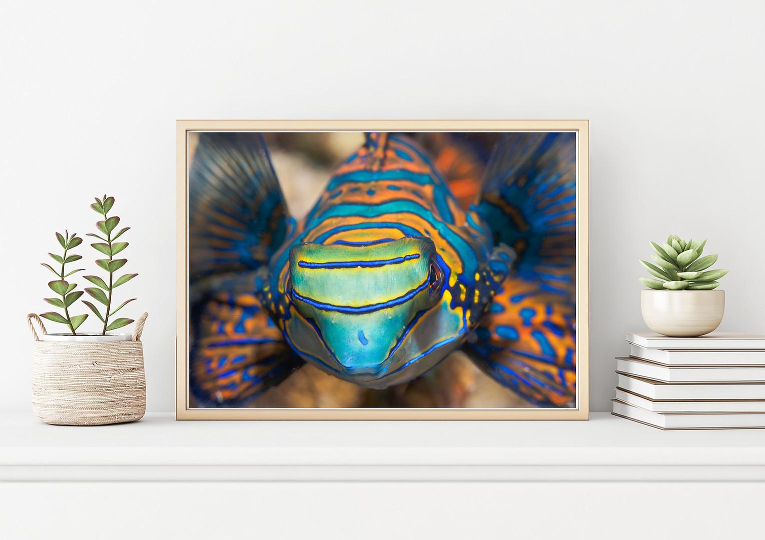 bugDreamer_frames_prints_003