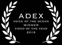 bugDreamer_Adex_video_of_the_year_2019.j