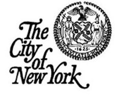 New York City Pistol Permit Application Link