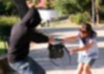 NRA Refuse to be a Victim Seminar RTBAV NY