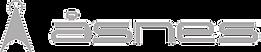 asnes-logo-gra.png
