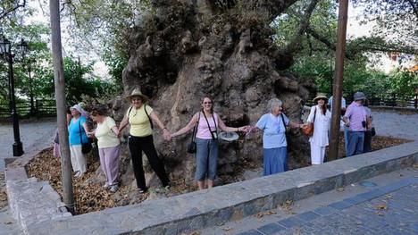 Women Encircle Two Thousand Year Old Plane Tree at Krasi