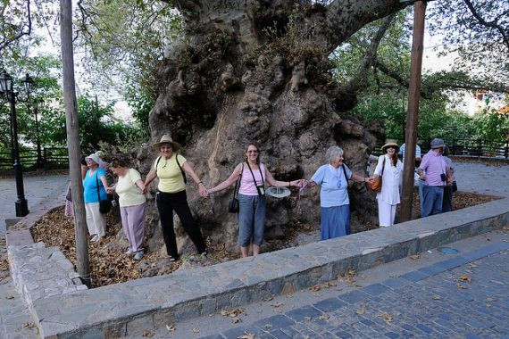 plane tree krasi with women.jpg