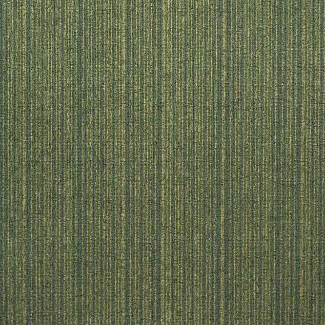 Expansion-676_PACKHOT_18474-LR.jpg