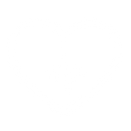 Healthcare-Icon.png